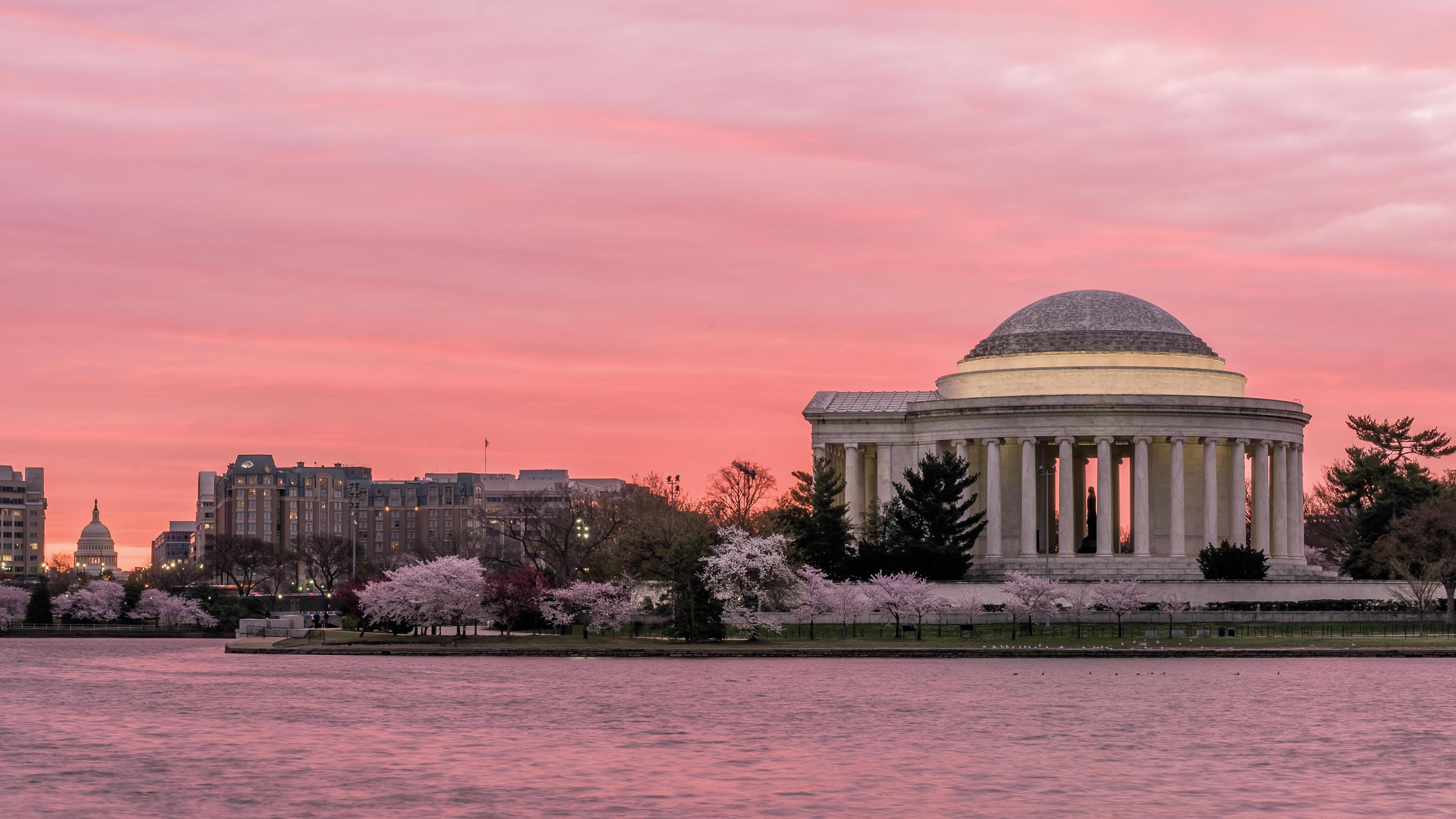 John Thomas, Cherry Blossom Sunrise